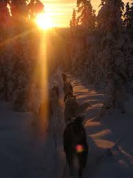 dawn to dusk light. The Light Of Winter, Colliding At Dawn And Dusk To