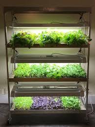 grow produce indoors all year long