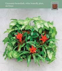 wall planter barbara bestor enlarge image thumb enlarge image wall planter