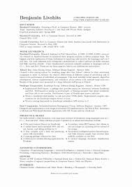 Sample Profile For Resume Beautiful Example Resume Profile Examples