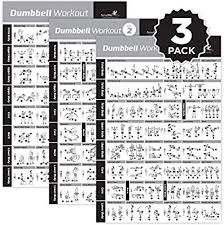 Newme Fitness Dumbbell Workout Exercise Poster Now