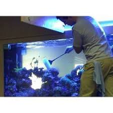 Image result for aquarium cleaning