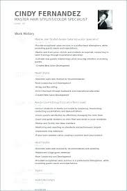 Hair Stylist Resume Interesting Examples Of Hair Stylist Resumes Hair Stylist Resume Examples Salon
