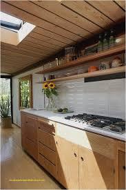 luxury kitchen cabinets. Kitchen Remodel Under 3000 For Home Design Luxury Cabinets Layout Plans Fisalgeria