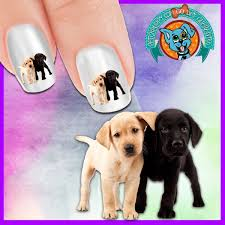 Labrador Puppy Love Nail Art Decals (Now 50% more FREE ) – Patch Puppy