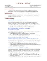 Professional Cv Format For A Bank Job Professional Resumes