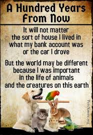 Pets N More Inspiring Quotes For People Who Love Animals Animal Best Love Animal Quotes