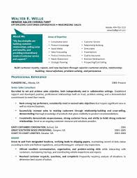 Sample Resume Of A Business Development Consultant Save Consultant