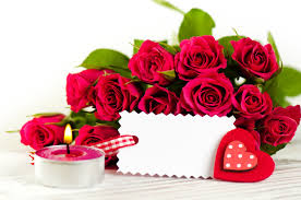 love flowers roses
