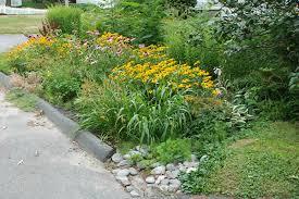 Small Picture Soak Up the Rain Rain Gardens Soak Up the Rain US EPA