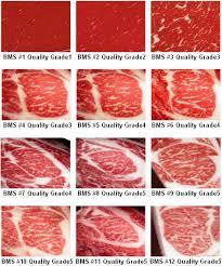 Beef Marbling Standards In 2019 Food Beef Steak Wagyu Meat