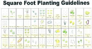 attractive best vegetable garden layout best vegetable garden layout app home in decor vegetable garden plans