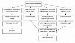 discussion essay structure ielts speaking research proposal  discussion essay structure ielts speaking