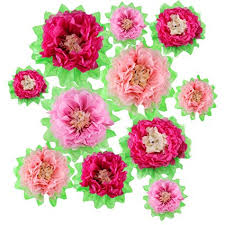 Tissue Paper Flower Pinterest Amazon Com Gejoy 12 Pieces Pink Paper Flower Diy Crafting Kit Wall