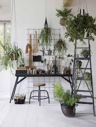 Plant Interior Design Simple Decorating