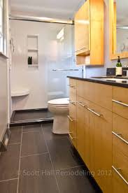 Columbus Ohio Onyx Collection Modern Master Bath SHR Scott - Small master bathroom