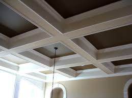 Furniture Marvelous Images About Ceiling Ideas Tray Ceilings