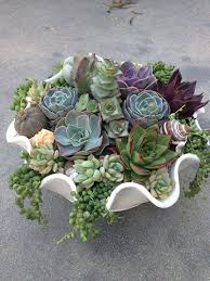 Glass Bowl Decoration Ideas 60 Succulent Decorating Ideas 43