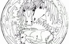 Kleurplaat Paard Met Veulen Uniek Kleurplaten Van Mandala