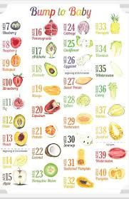Fruit Comparison Chart Fruit Of The Month Baby Calendar Baby Fruit Baby Weeks