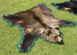 grizzly bear hide rug designs