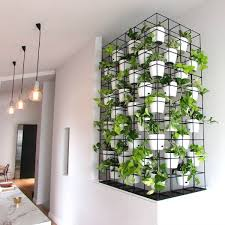 A stunning vertical garden indoor install by Brenton Jurey at Reogro in  Melbourne Australia.