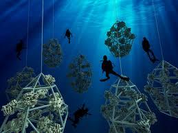 Underwater Habitat Design Diving Habitat Reef Design Lab