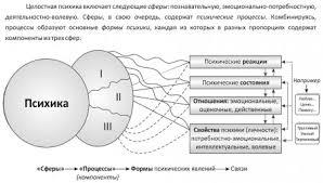 РЕЗЕРВЫ ПСИХИКИ это что такое РЕЗЕРВЫ ПСИХИКИ определение  Структура психики