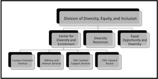 Ub Organizational Chart Division Of Diversity Equity And Inclusion Diversity