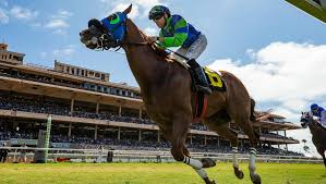 2017 Breeders Cup Charts Road To 2019 Breeders Cup Three Heating Up Three Cooling
