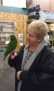 Bird Of The Month - C & B Birds