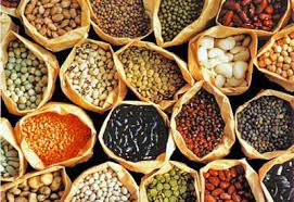 garden seeds. Interesting Seeds Bulk Garden Seed In Seeds 2