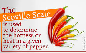 Pepper Scoville Scale Chart Know About Scoville Scale For Peppers To Measure Their Hotness