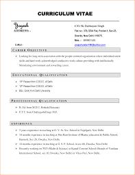 Cv V Resume Free Resume