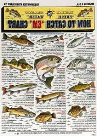Freshwater Fish Chart Tightline Publications Fishermans Freshwater Fish Chart