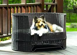 outdoor raised dog beds outdoor elevated dog bed with canopy designs outdoor raised dog beds image outdoor raised dog beds