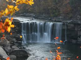 Image result for cumberland falls state park