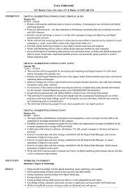 Marketing Consultant Resume Digital Marketing Consultant Resume Samples Velvet Jobs 1