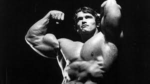 Arnold Gym Workout Chart Full Body Workouts Of The Legends T Nation