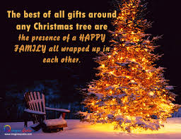 Christmas Tree Quotes Extraordinary Christmas Tree Quotes Happy Holidays