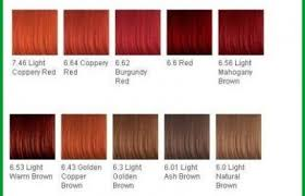 28 Albums Of Red Hair Color Chart Explore Thousands Of