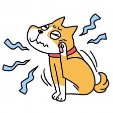 「犬 アレルギー イラスト」の画像検索結果