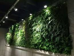 green wall artificial light