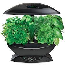 Hydroponics Herb Garden Kitchen Indoor Herb Garden Kit 5 Indoor Garden Kits For Any Herb Lover