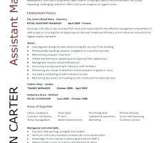 Personal Statement On Resume Enchanting Retail Assistant Manager Resume Unique Counselling Resume Personal