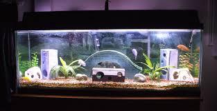 interior design diy fish decor simple aquarium decoration ideas home desi on for interior