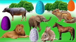 Các con vật, bé học các con vật qua hình ảnh, Dạy bé con vật ...