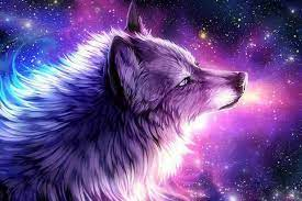 Wallpaper Galaxy Cute Aesthetic Images Wolf