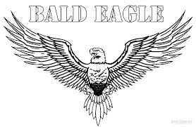 Bald Eagle Coloring Page Bald