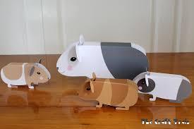 paper guinea pigs